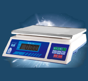 Electronic Digital Weighing High Quality Scale (DH~dh) pictures & photos