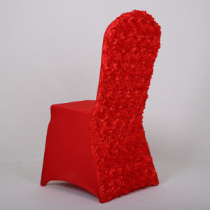 Nylon Chair Cover