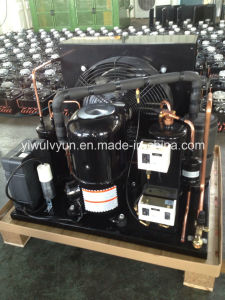 Tecumseh Condensing Unit for Commercial Freezer pictures & photos