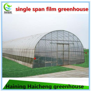 Cheap Commercial Used Greenhouse Sale