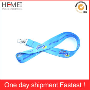 Lanyard with Card Holder, Cheap Lanyard