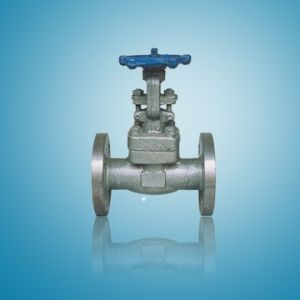 Forged 304ss Gate Valve RF 600lbs