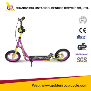 "(Gl1202-A) Factory Hot Selling High Quality 12"" Kick Scooter for Children pictures & photos"