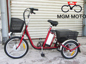 20′ En15194 Approved Three Wheels Electric Bike for Adults pictures & photos