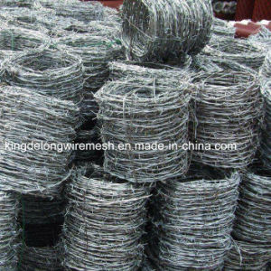 Kdl Best Quality Barbed Wire pictures & photos