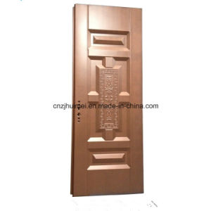 Copper Painting Steel Door Home Furniture School