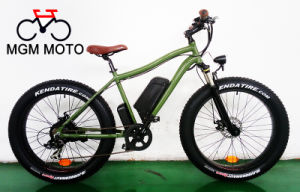 500W--1000W Big Power 26′ Fat Tire Mountain E Bike pictures & photos