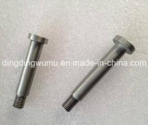 Customized and Standard Tungsten Screw/Bolt for Heating Element pictures & photos