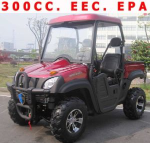 China UTV300 4x2 22 HP EEC and EPA (XUV 300CCEEC) - China