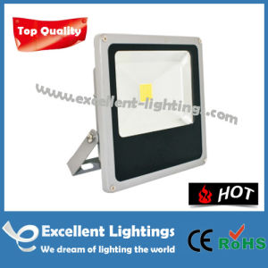Outdoor Lighting 3000-6500 K Efgd-1103001 LED Flood Light