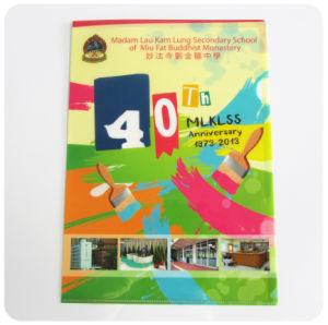 Custom plastic PP A4 file holder (pockets file folder) pictures & photos