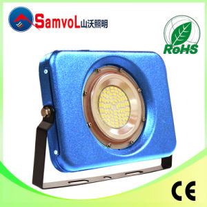 30W New LED Floodlight with IP67, Approved CE and RoHS Certificate