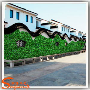 Outdoor Plastic Artificial Grass Wall Made in China pictures & photos