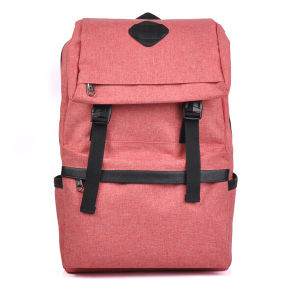 Beautiful Suitable Teenager Cheap Backpacks pictures & photos
