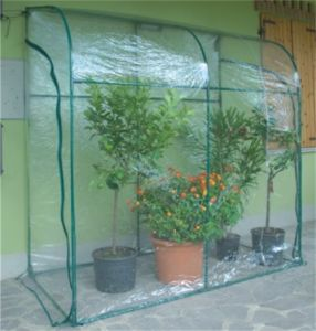 Walk-in Greenhouse with PVC Cover