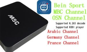 2016 Hot Arabic IPTV 1000 Channels 1 Years Subscription Android 4.4 TV Box Arabic IPTV Box with No Monthy Fee