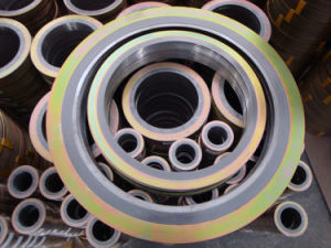Spiral Wound Gasket - Item: Hy-S100s pictures & photos