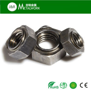 Stainless / Carbon Steel Hex Welding / Weld Nut DIN929 pictures & photos