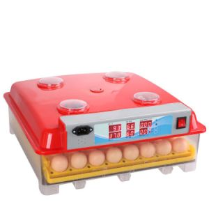 Automatic Digital 144 Eggs Mini Hatching Eggs Incubator (VA-48) pictures & photos