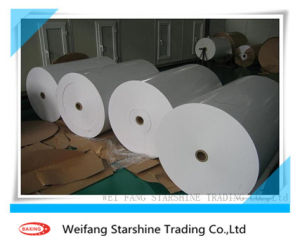 Coated Art Paper for Printing