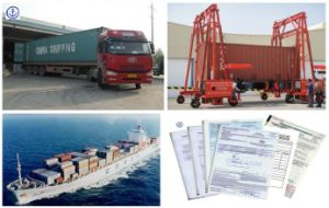 Consolidate Container Shipping Service From Zhejiang to Dubai