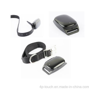 High Quality Newest Pet GPS Tracker with Real Time Tracking (EV-200) pictures & photos