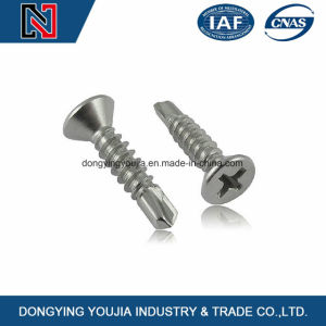 DIN 7504r Cross Recessed Raised Contersunk Self-Drilling Tapping Screws pictures & photos