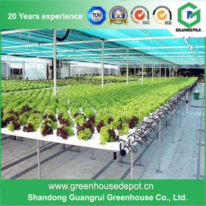 Multi-Span Glass Greenhouse with Hydroponic System for Agriculture pictures & photos