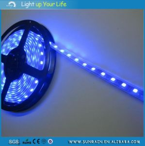 LED Strip Light Outdoor Use for Car Party Garden IP44 100m/Roll 24V 12V Double Faced Adhesive Tape pictures & photos