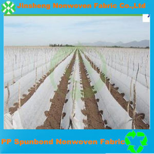 Factory Direct Sale Polypropylene Spunbond Agricultural Nonwoven Fabric
