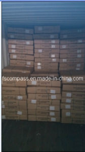 Lowest Freight Rate From Guangzhou to Tema Ghana and Abidijan pictures & photos
