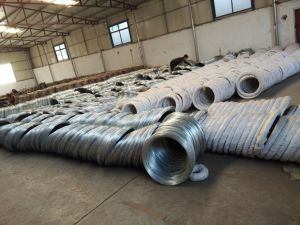 Best Quality Galvanized Wire Factory pictures & photos