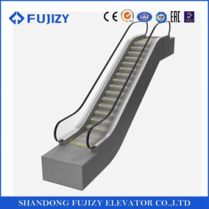 Fujizy Price Escalator with High Quality pictures & photos
