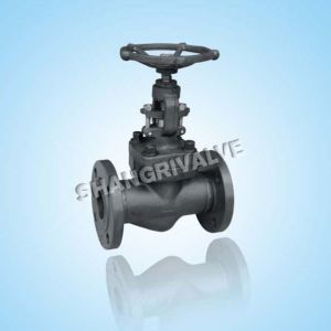 High Pressure Flanged Forged Globe Valve (Type: J41H/Y/W)