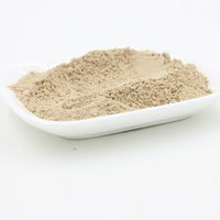 Coprinus Comatus Powder Mushroom Extract Seasonings Condiments