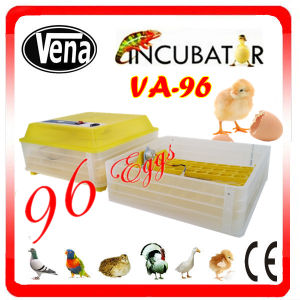 Hot Selling Capacity 96 Eggs Automatic Solar Incubator pictures & photos