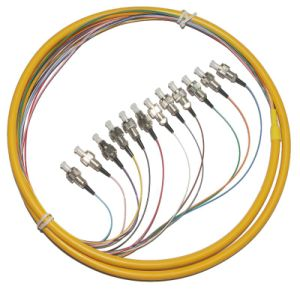 12 Cores Ribbon Fiber Optical Patch Cord