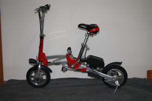 Advanced Electric Bike (OS-FEB02-R)