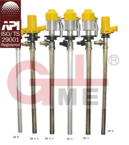 Fuel Electric Transfer Barrel Pump (JLP1) pictures & photos
