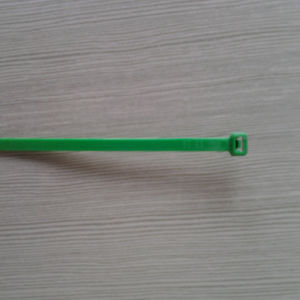Green Color Nylon Cable Ties 4*200 pictures & photos