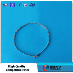 Stainless Steel Hoop for Pole pictures & photos