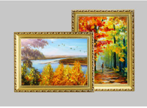 60*120cm Oil Picture Frame & Canvas Frame pictures & photos