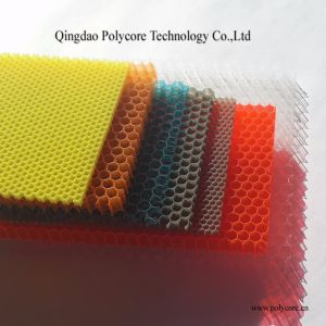 PC Honeycomb Board (plastic honeycomb panel) pictures & photos