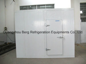 Cold Room for Food in Good Quality and Service pictures & photos