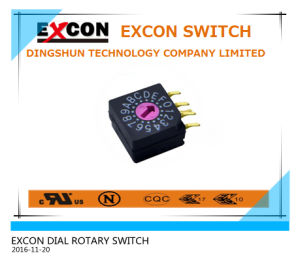 Rotary DIP Switch for Controller