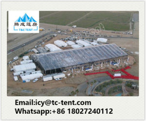 2000 People Big Tent Wedding Event a Shaped Tent for Sale