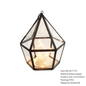 China Newest Hanging Glass Terrarium For Lighting Hx 7773 China