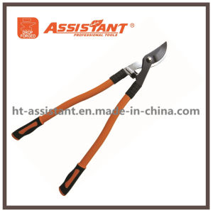 Pruning Shears Tree Branches Bypass Loppers