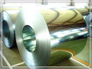 Hot DIP Galvanized Steel Coils / Gi