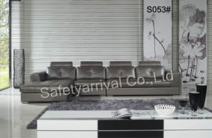 Leather Sofa (S053#)